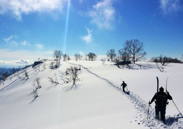 backcountry-skiing