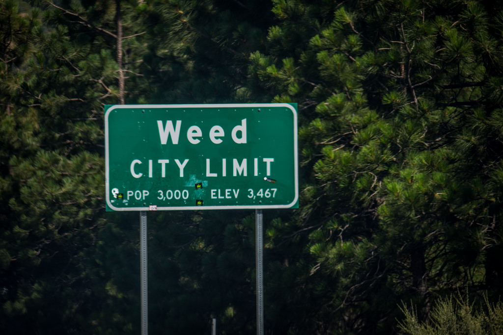 weed-california